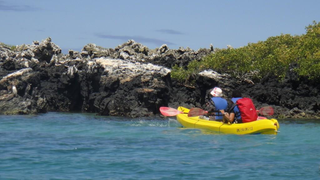 Galapagos - kayak Isabela