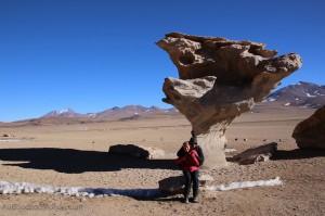 Bolivie - Arbol de Piedra