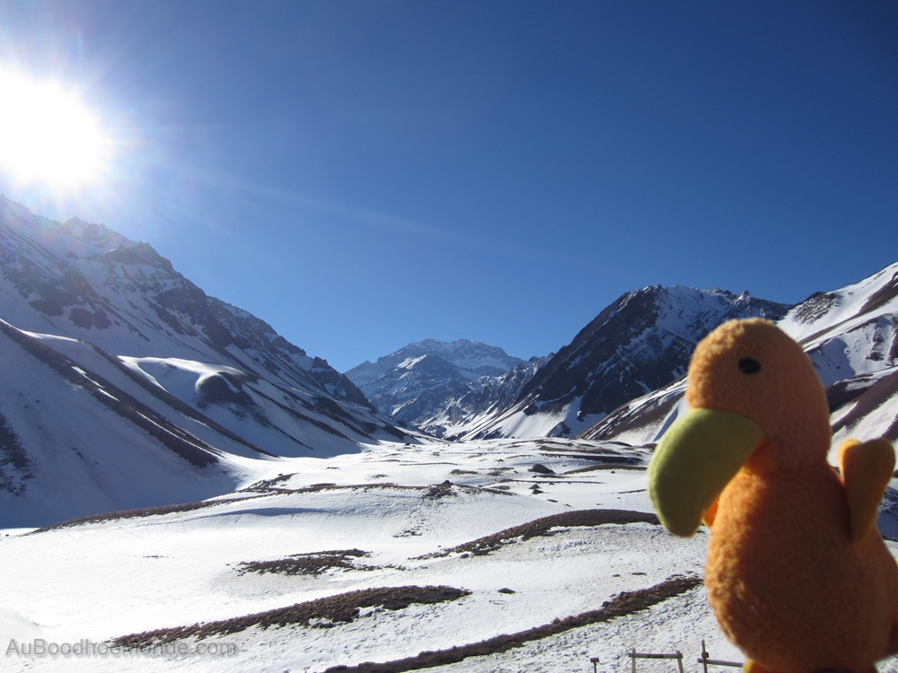Auboodhoomonde - Dodo Moris - Argentine Aconcagua
