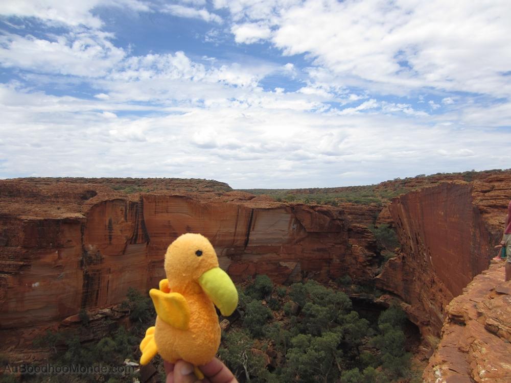 Auboodhoomonde - Dodo Moris - Australie Kings Canyon