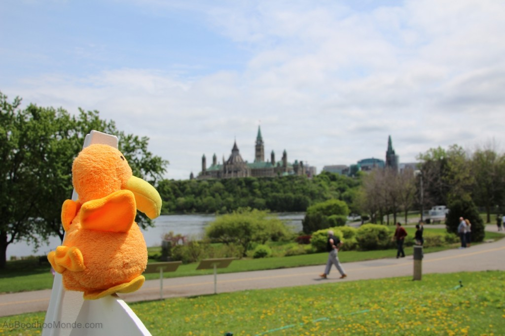 Auboodhoomonde - Dodo Moris - Canada Ottawa