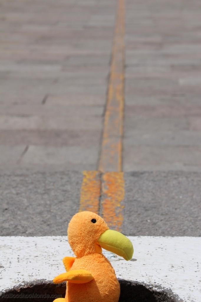 Auboodhoomonde - Dodo Moris - Equateur Mitad del Mundo