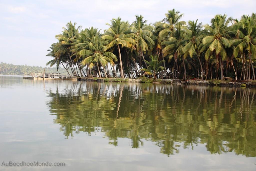 Valiyaparamba - Riviere derriere