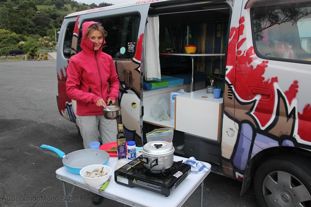 Nouvelle-Zelande - Banks Peninsula - Camping