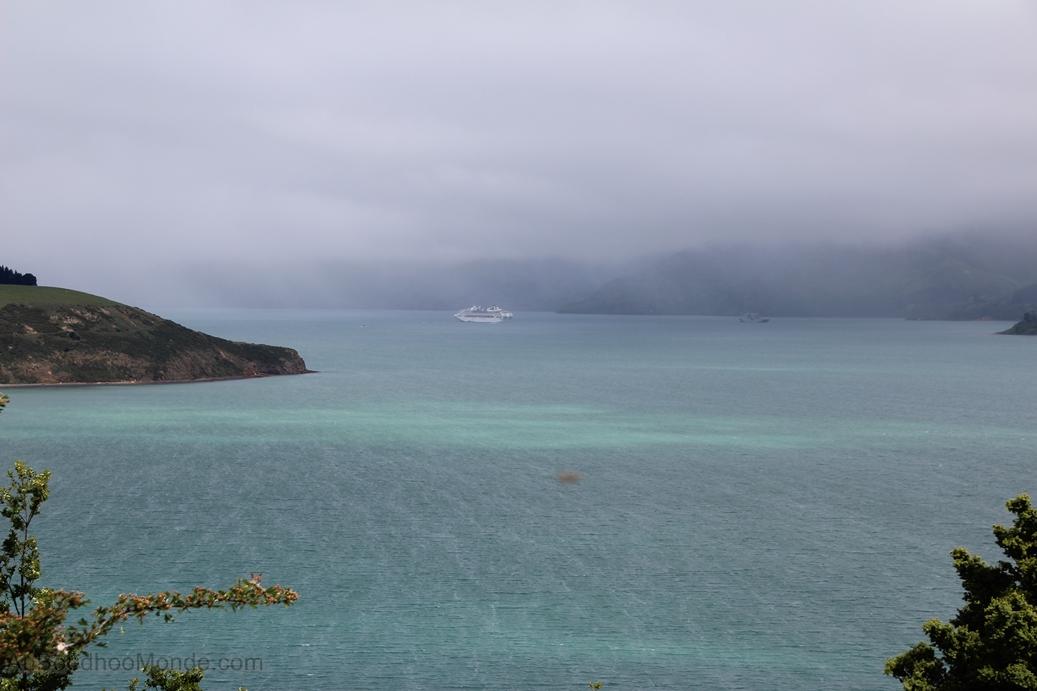 Nouvelle-Zelande - Banks Peninsula