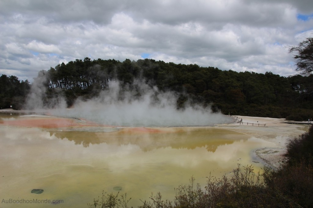 Nouvelle-Zelande - Champagne Pool