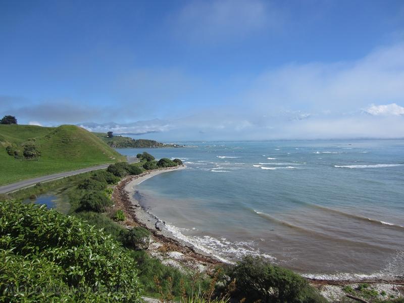 Nouvelle-Zelande - Ile du Sud - Kaikoura
