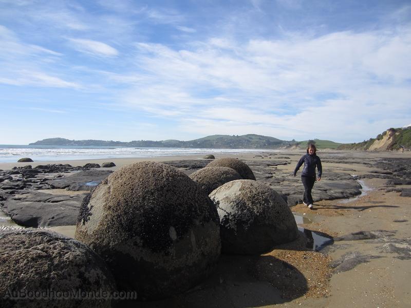Nouvelle-Zelande - Ile du Sud - Moeraki Boulders