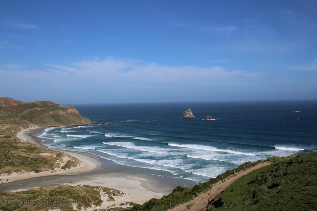 Nouvelle-Zelande - Otago Peninsula - Sandfly Bay