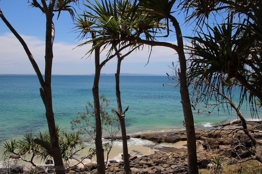 Australie - Noosa National Park