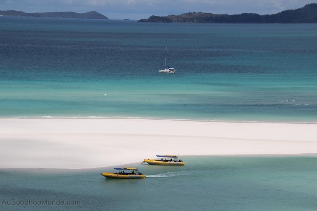 Australie - Whitsundays - Zodiac