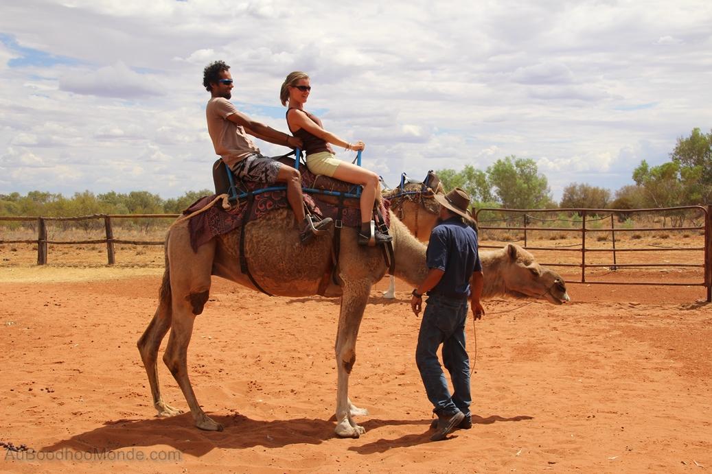 Australie - tour en chameau