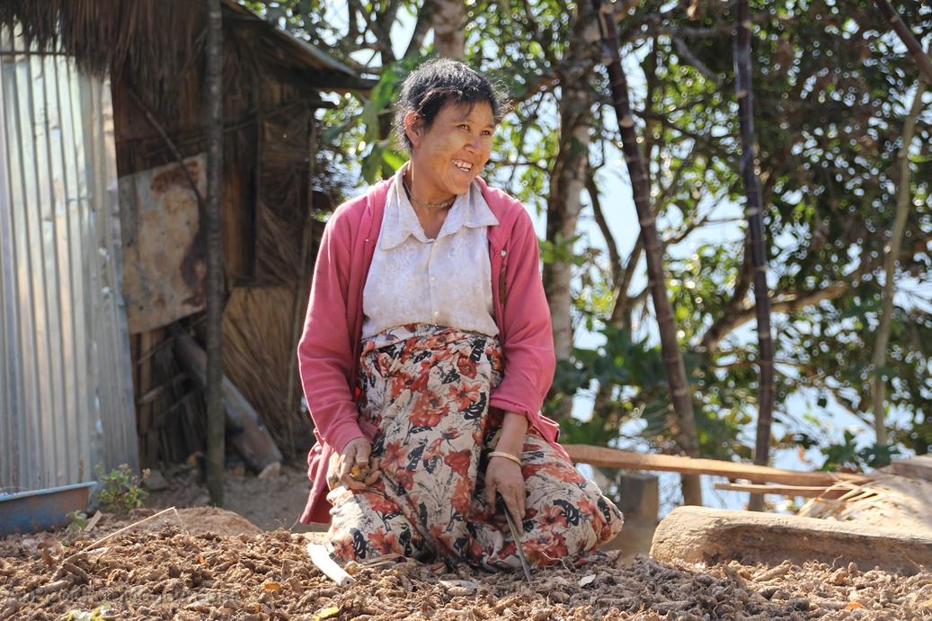 Myanmar - Curcuma seche