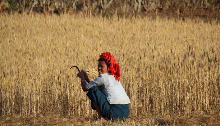 Trek au Myanmar : Kalaw – Lac Inle