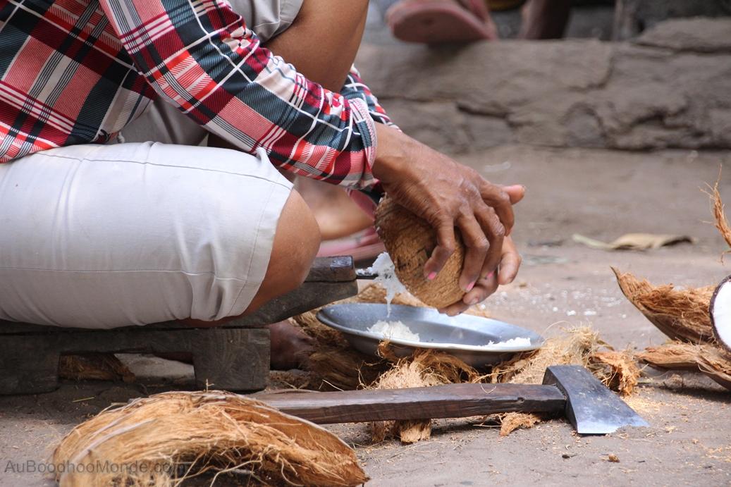 Enfants du Mékong - Noix de coco