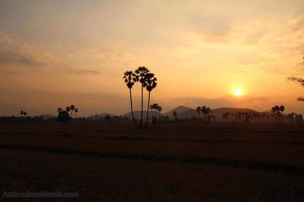 Cambodge - Campagnes Kompong Chhnang