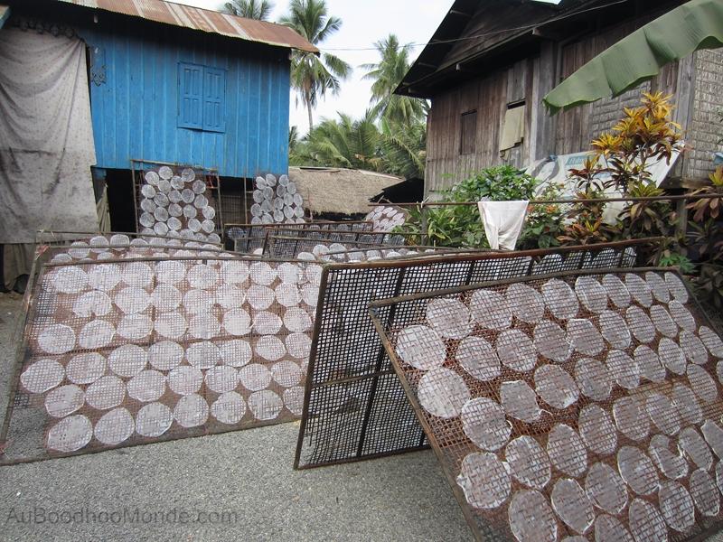 Cambodge - Feuilles de riz