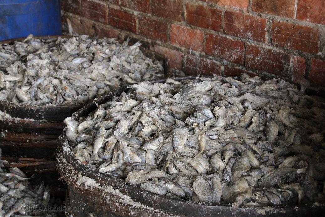 Cambodge - Poisson pourri entrepots