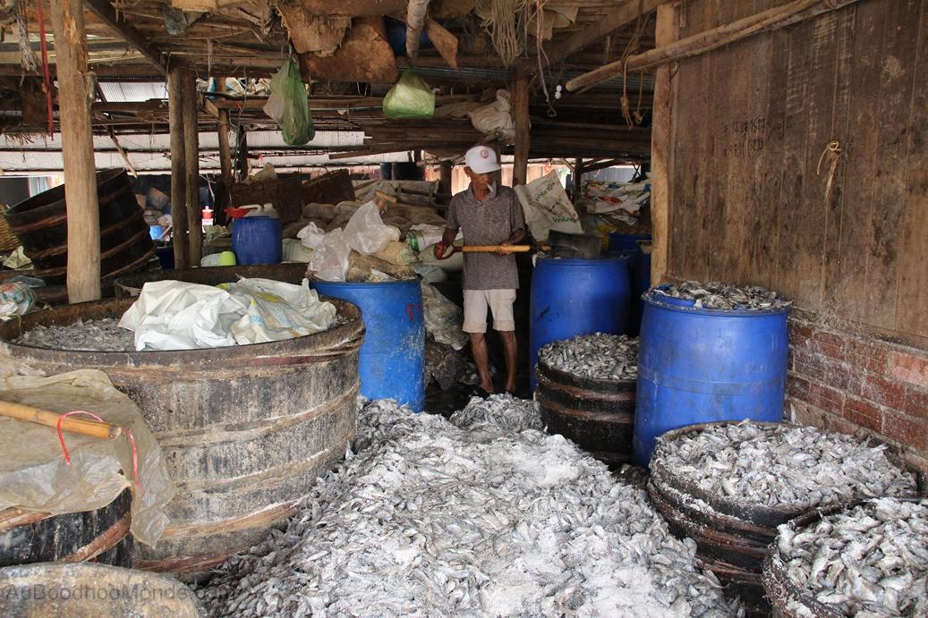 Cambodge - Poisson pourri