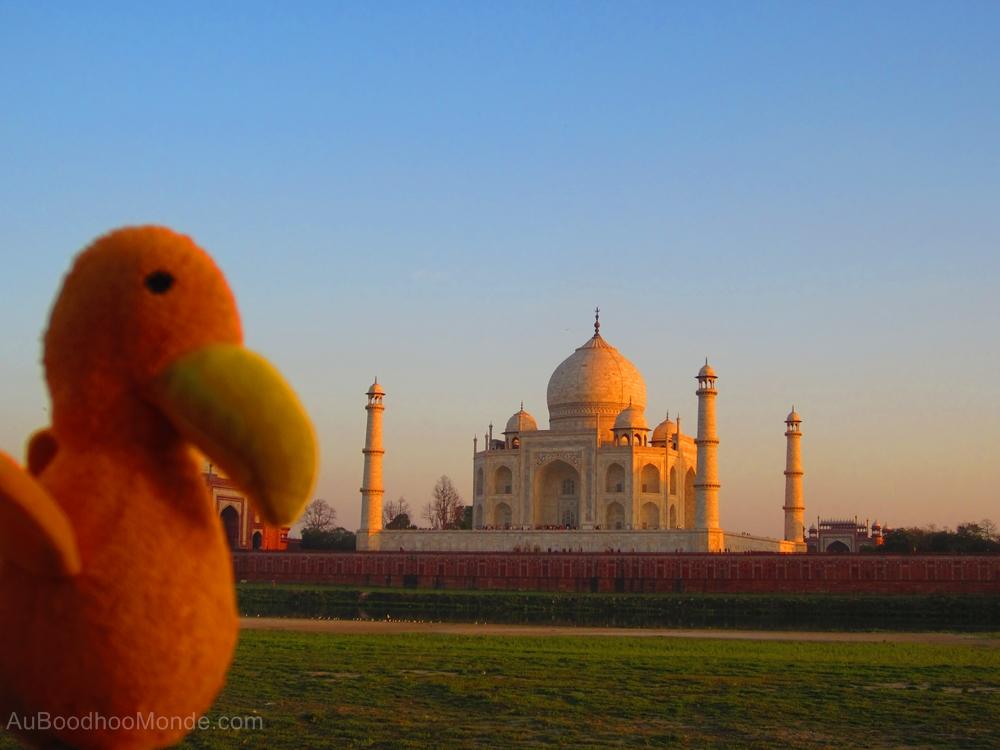 Auboodhoomonde - Dodo Moris -  Inde Taj Mahal
