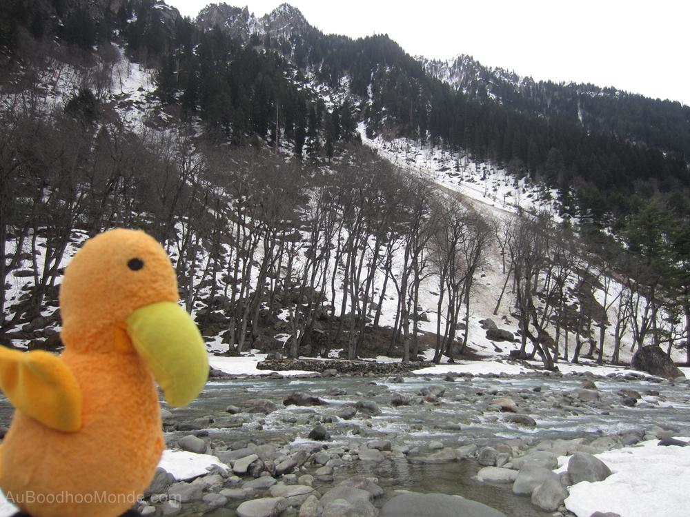 Auboodhoomonde - Dodo Moris - Kashmir Sonnmarg