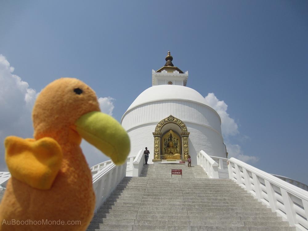 Auboodhoomonde - Dodo Moris - Pokhara Peace Pagoda