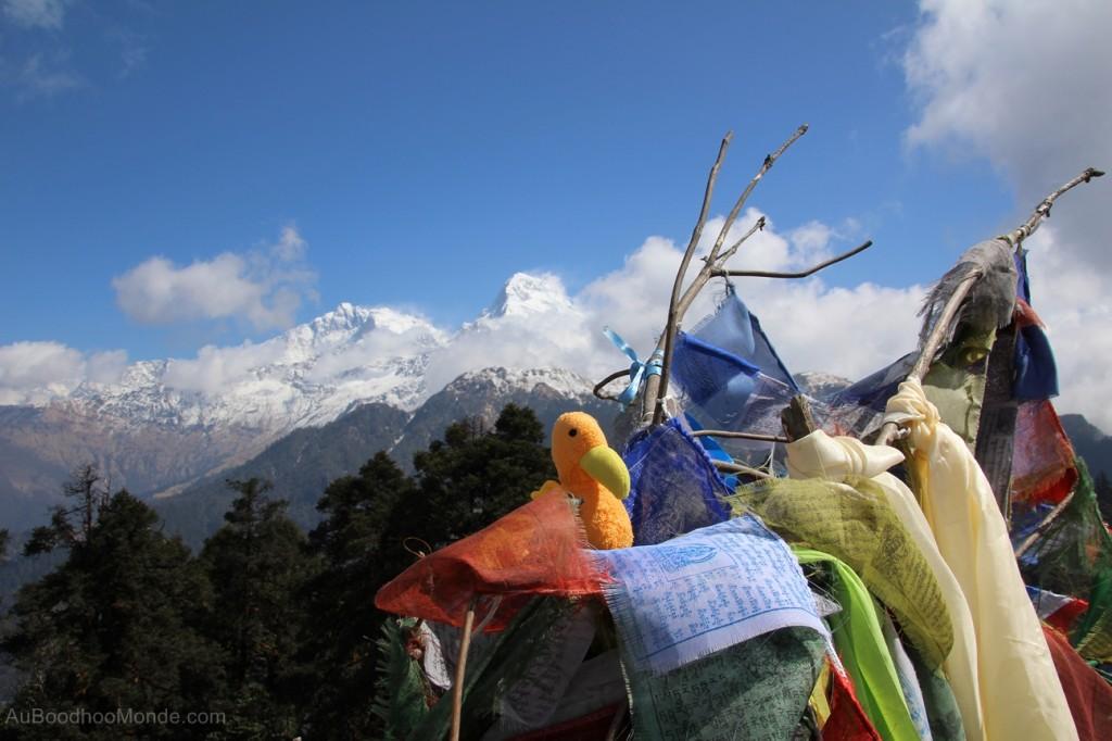 Auboodhoomonde - Dodo Moris - Trek Himalaya