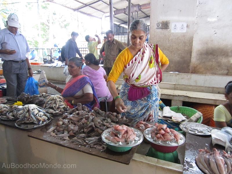 Inde - Marche aux poissons