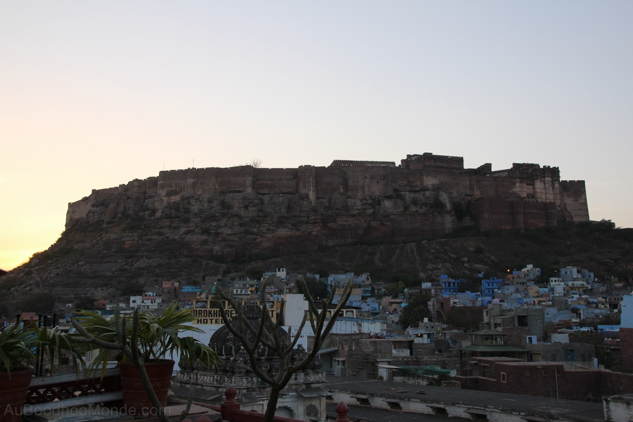 Inde - Rajasthan - Jodhpur - Mehrangarh colline