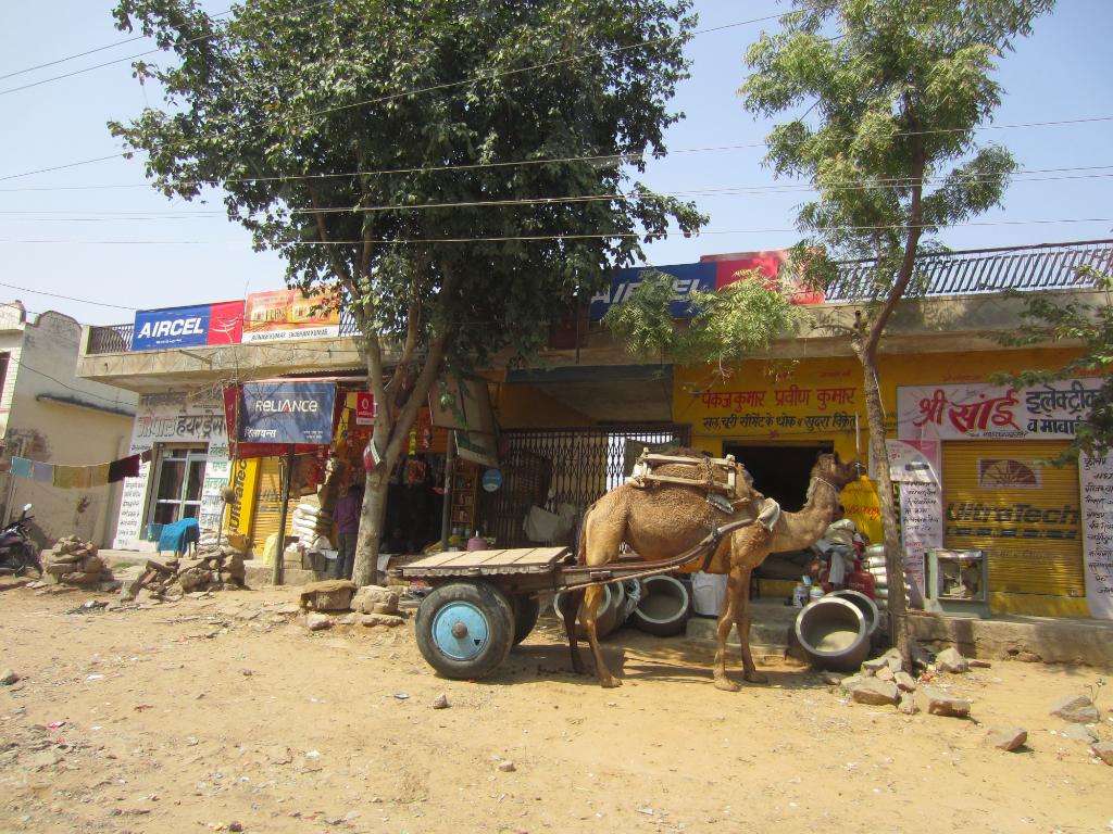 Inde - Rajasthan tours