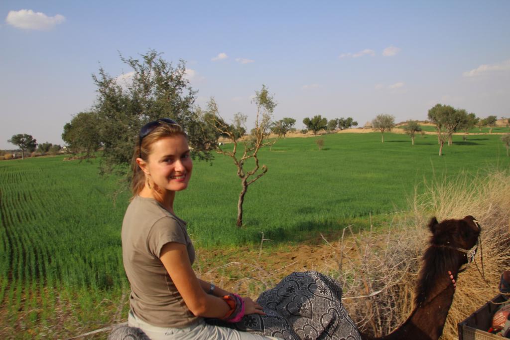 Inde - balade chameau Thar