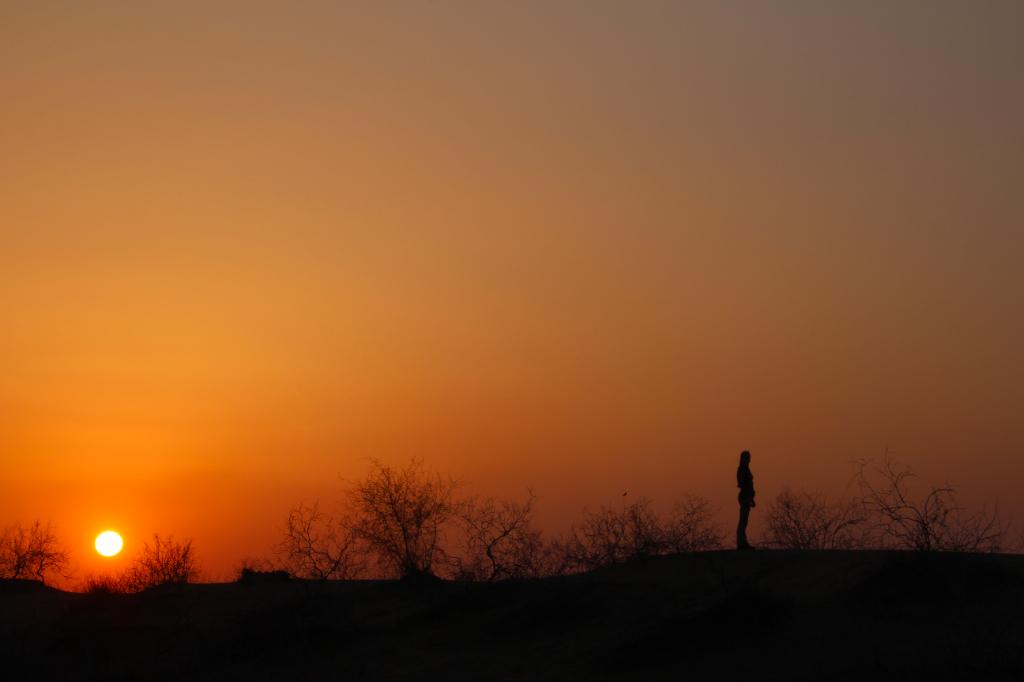 Inde - desert Rajasthan soleil