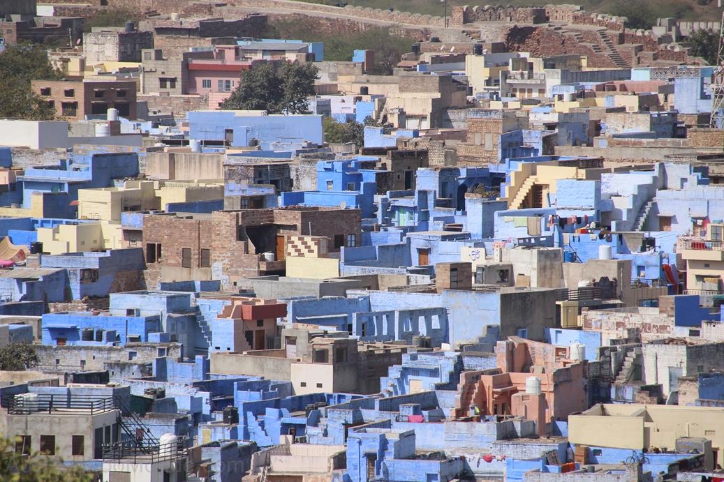 Inde - Rajasthan - Ville bleue Jodhpur