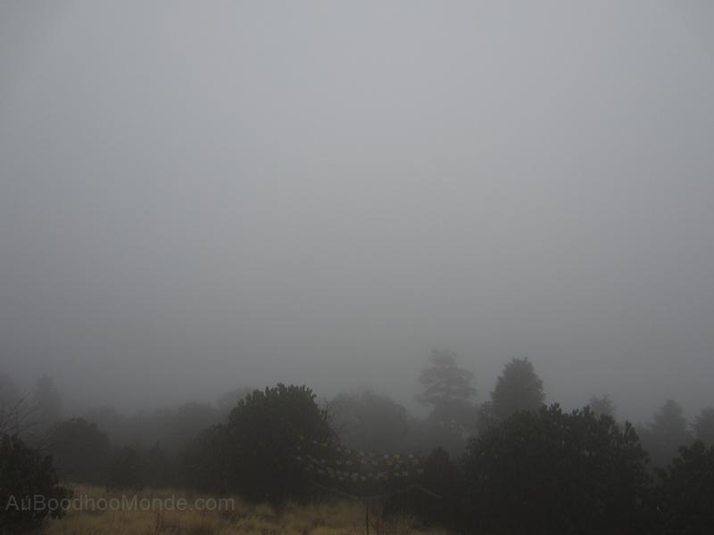 Poon Hill vue bouchee