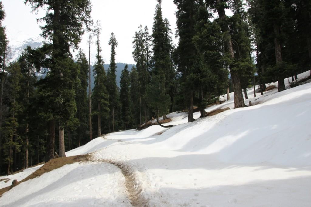 Pahalgam paysage