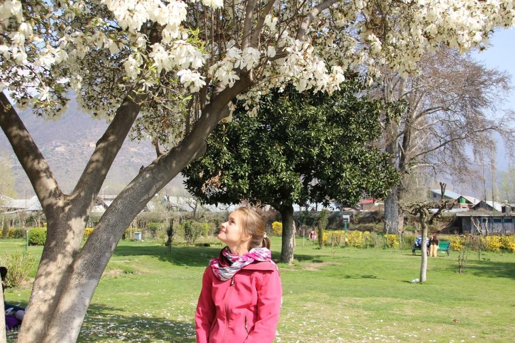 Srinagar jardins moghols