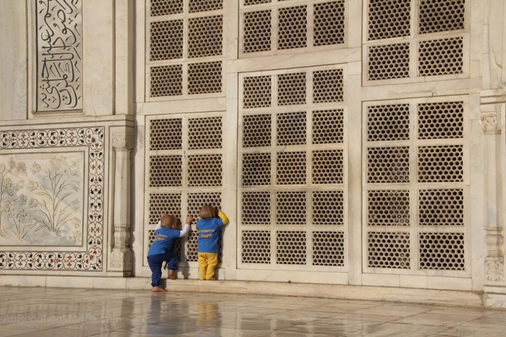 Inde - jhali Taj Mahal